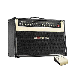 Comprar Amplificador Evidence 100-Borne