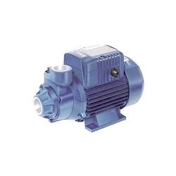 Comprar Bomba d'água elétrica monofásica hydrobloc 1x1 0,75 kw - KSB P1000-KSB
