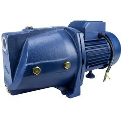Comprar Bomba D'água Autoaspirante para Água Limpa 1/2 HP, 1 - Bivolt - SGJW37N-Tander