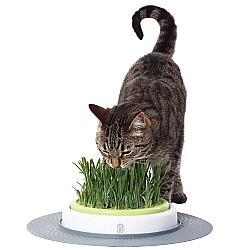 Comprar Brinquedo de Jardim para Gatos , Cat It Grass Garden-Chalesco