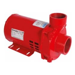 Comprar Motobomba incêndio 2.1/2 2.1/2 1.5 cv monofásica 110v/220v  - ECS-150 IN-Eletroplas