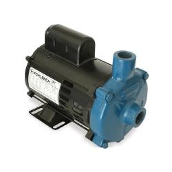 Comprar Motobomba Centrífuga 1 1.0 CV, Monoestágio Monofásica 110/220v - ECS 100MP-Eletroplas