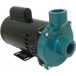 Comprar Motobomba Centrífuga rotor semi-aberto 1.1/2 1.1/2 3.0 cv água suja trifásica- ECS-SA300 M/T-Eletroplas