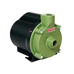 Comprar MotoBomba Elétrica Centrifuga, 1/3CV-  BRC-2000-Schneider