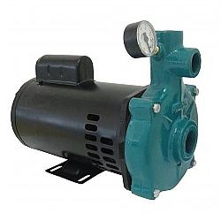 Comprar Motobomba Centr�fuga Injetora, Monoest�gio, 110V/220V, 1.5cv, Injetor I-210, 4 Polegadas - ECI-150M/T-Eletroplas