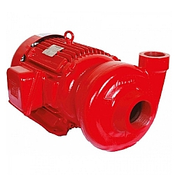 Comprar Motobomba Elétrica Centrífuga, Monofásica 110/220v, 15CV - ECS-1250 IN-Eletroplas