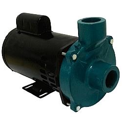 Comprar Motobomba Elétrica Centrífuga, Monofásica 110/220v, 1.5 Cv - ECS - 150M/T-Eletroplas