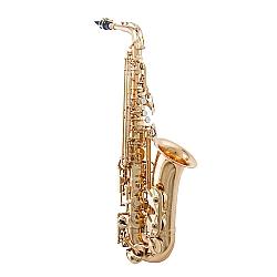 Comprar Saxofone Alto com Acabamento Vintage e Afina��o - WSA OL-Waldman